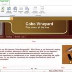 Microsoft Office 365 websiteSetup